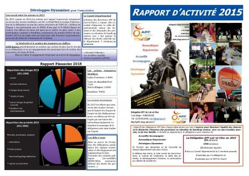 Rapport activite 2015.jpg